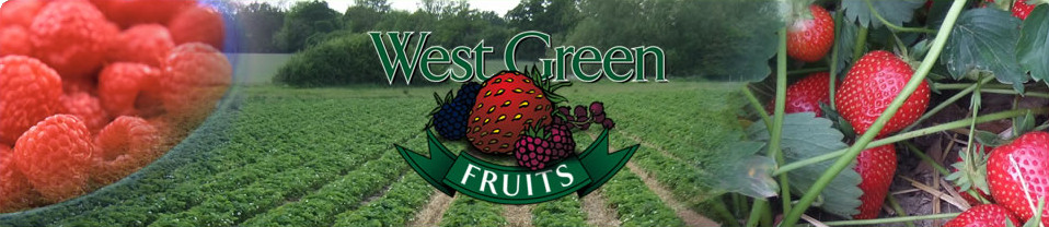 West Green Fruits - Pick Your Own fruit in Hartley Wintney, Hook, Hampshire, RG27 8LP